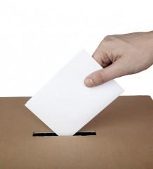 ballot voting vote box politics choice election