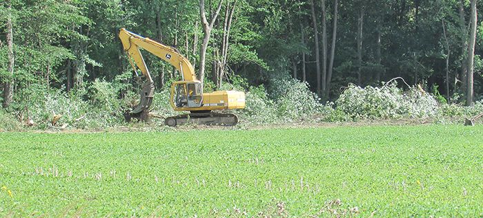 The day after Chatham-Kent council rejected consideration of a bylaw regulating woodlots, heavy equipment was brought in to clear a woodlot on Taylor Road near Ridgetown. Woodlot preservation supporters are pointing to the latest woodlot destruction as an example of why the municipality needs protection in place.