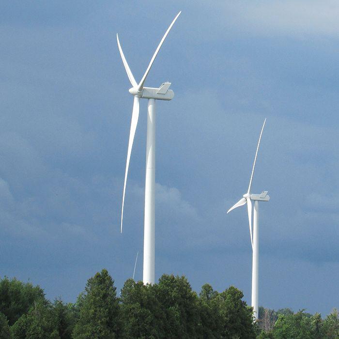 turbinesweb