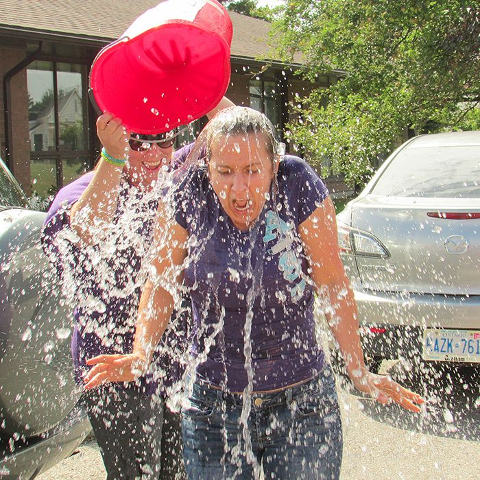 Meadow Park Nursing Home staff ended August on a fun note, taking part in the ALS Ice Bucket Challenge. One of the staff members' sisters has the disease.