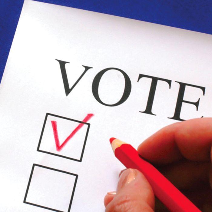 voteballot2