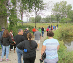 Hikers start down a one-kilometre trail along the wetlands near Mitchell's Bay Saturday. The Mitchell's Bay North Lakeshore Trail officially opened and is the latest link in the three-part trail.