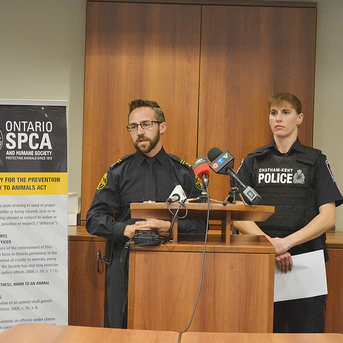 Ontario SPCA Inspector Brad Dewar and Chatham Kent Police Service Const. Renee Cowell brief the media on the latest in the investigation into an alleged dog-fighting ring near Tilbury.