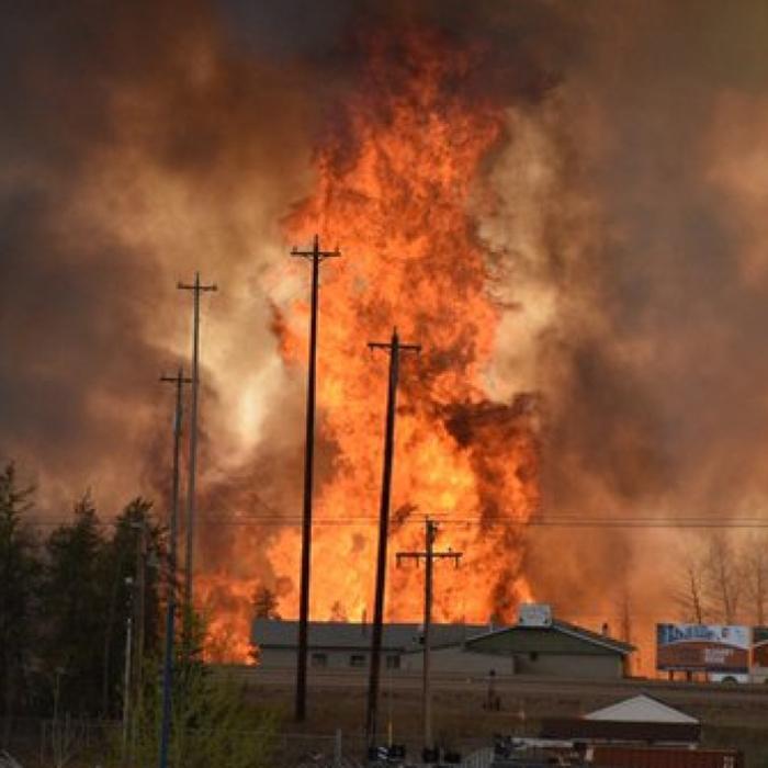 (Courtesy CBC.ca)