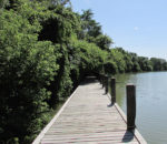 Work to reduce erosion on this section of the Thames riverbank will begin in September at a cost of just under $1 million.