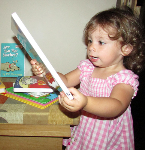 Children's books are stacked in the home of IMAGINATIONink's Patricia Weaver Blonde, whose granddaughter Jamie Lynn, pictured, enjoys looking at. The books are collected to go into the Christmas hampers of organizations that pack Christmas gift boxes.