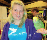Katrina Seniuk with Hands on Exotic, an animal shelter in Etobicoke, was at the Southwestern Ontario Pet Expo on the weekend with her feathered friend and 4-year-old kangaroo, Jasmine.